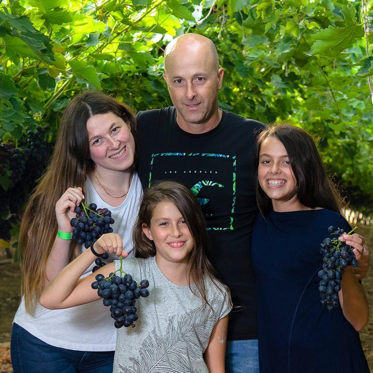 אסף ובנותיו, כורם בענבי טלי