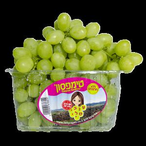 ענבים ירוקים - טימפסון