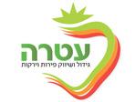 logo_online_20